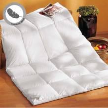 Daunendecke Rubin 140x200cm, extra kuschelige Kassettendecke für kühle Winternächte