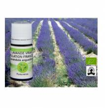 Ätherisches Öl Feiner oder echter Lavendel Bio 10 ml