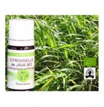 Ätherisches Öl Zitronengras von Java Bio 10 ml