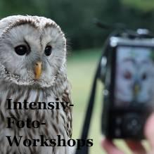 GUTSCHEIN: Intensiv-Foto-Workshop in kleiner Gruppe