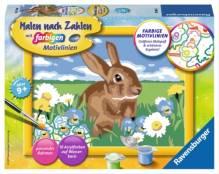 Ravensburger 280643 Malen nach Zahlen: Süßes Kaninchen