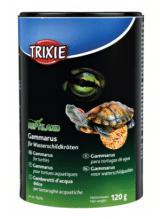 Gammarus f. Wasserschildkröten