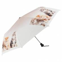 Regenschirm / Motivtaschenschirm