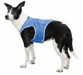 Hundebekleidung Trixie