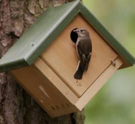 Vogelbedarf Vivara