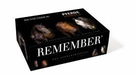 Spiele Remember