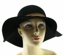 Hüte Scippis