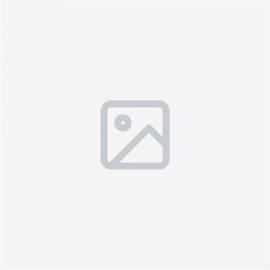Halsketten COEUR DE LION