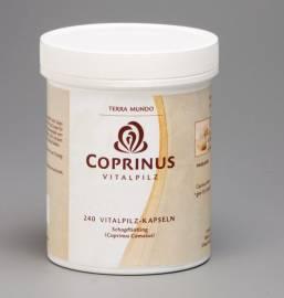 Vitamine & Nahrungsergänzungsmittel Terra Mundo