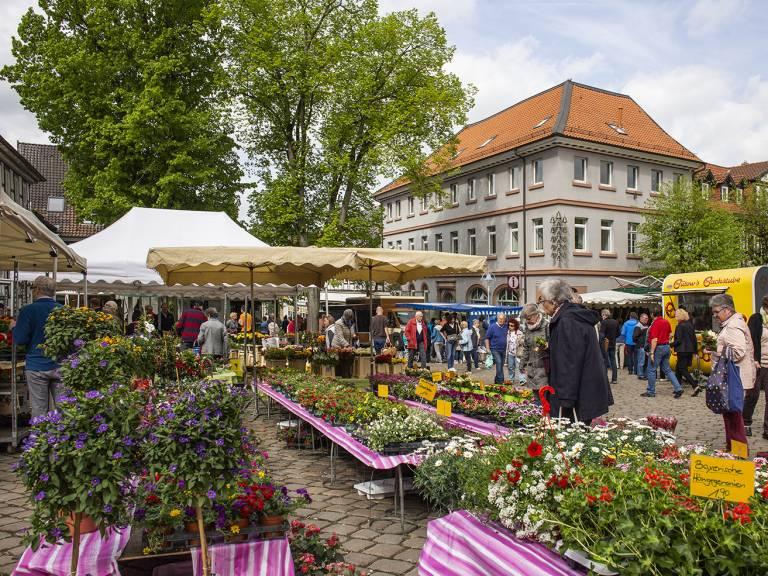 Wochenmarkt Alfeld Alfeld (Leine)