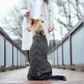 Hundebekleidung Hunter