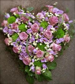 Blumen Rosen, Tricknelken