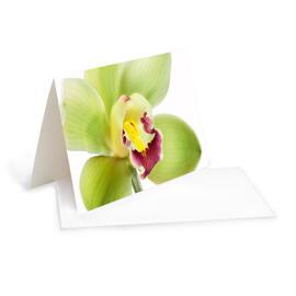 Postkarten Floralprint