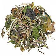 Weißer Tee Florapharm
