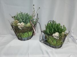 Pflanzen Muttertag Arte, Garten