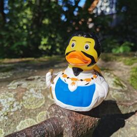 Märchenhafte Enten lilalu Aachen