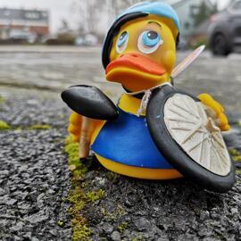 Sport- und Freizeitenten Lanco Ducks