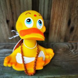 Badeenten Lanco Ducks