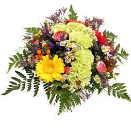 Blumen Flora Trans