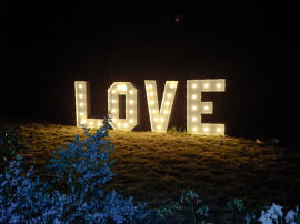 Unterhaltung Hochzeit Valentinstag Kunst Hochzeitsdeko