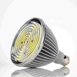LED-Leuchtmittel Neo-Neon