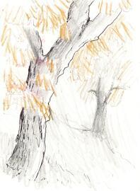 Zeichnungen Kunst & Unterhaltung Bilder von Sebastian Trommer