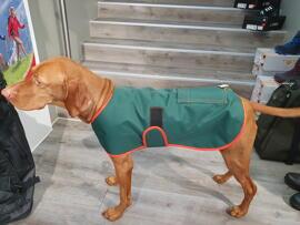 Hundebekleidung Alljagd