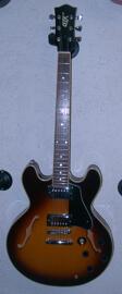 Elektrische Gitarren Kaman