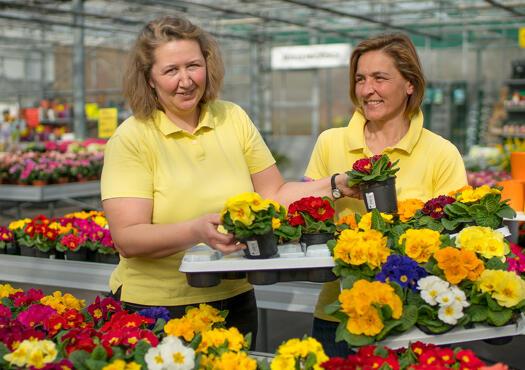 Monheimer Blumenmarkt