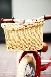 Paniers de vélo Trybike