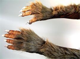 Kostüm-Handschuhe Kostüme