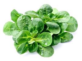 Frisches & Tiefgefrorenes Gemüse Gartensalat Letzebuerger Geméis