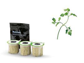 Pflanzen- & Kräuteranbausets Bosch