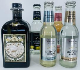 Gin V-SINNE