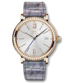 Montres automatiques International Watch & Co