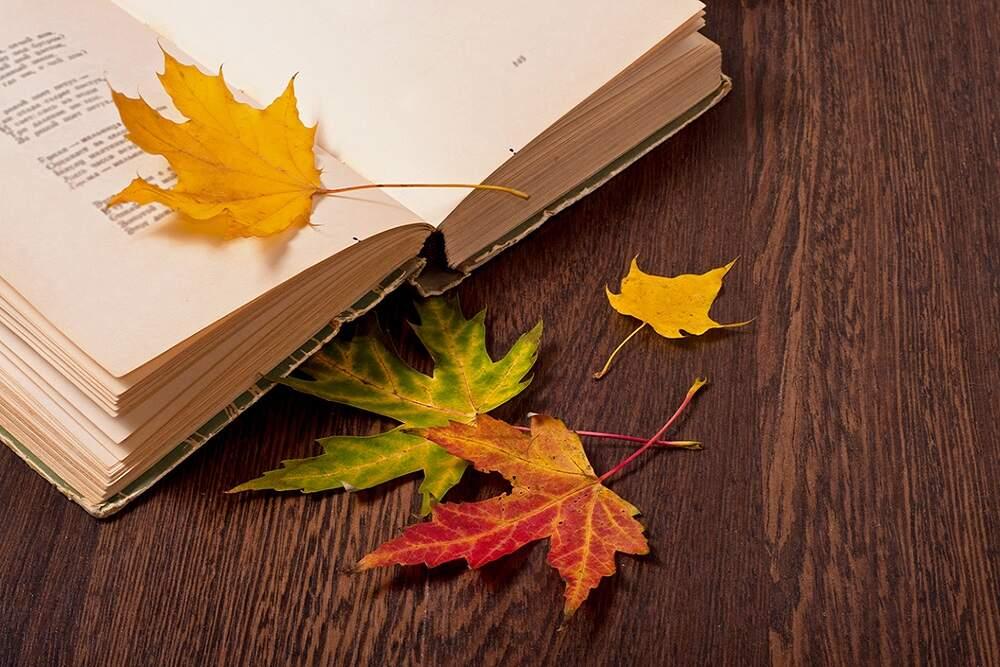 Herbstlektüre