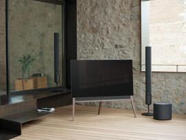 Fernseher Loewe