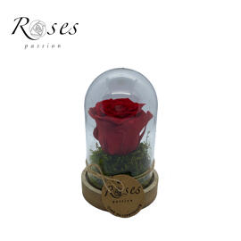 Trockenblumen ROSES PASSION