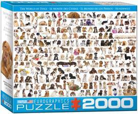 Puzzles Eurographics Puzzle