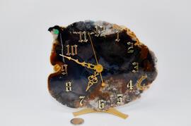 Pierres et fossiles Terrapractica