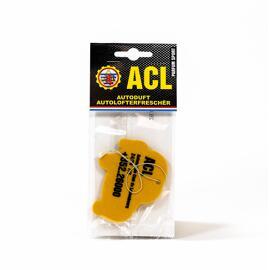 Fahrzeugreinigung ACL