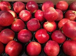 Frisches & Tiefgefrorenes Obst GROSBUSCH