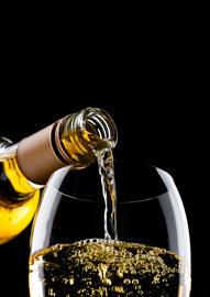 Burgund Vins blanc de Bourgogne ¦ Chablis