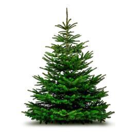 Festtags-Dekoartikel Weihnachtsbaum - Sapin de Noël 100/120