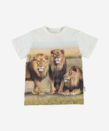 Shirts & Tops MOLO