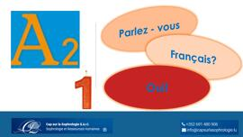 Sonstiges Langue français -  40 heures – Lifelong-learning.lu