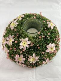 Blumen Raumdüfte Letzshop