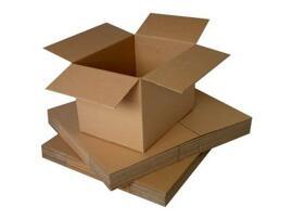 Emballages de déménagement et d'expédition Wizamart Basics