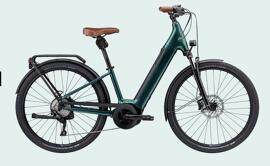 Fahrräder Cannondale