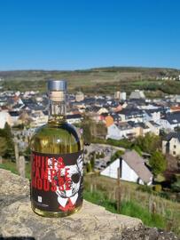 Luxembourg S.Gin - Distillerie Streng